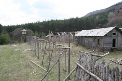 standing-camp18